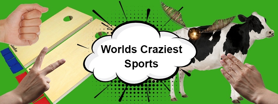 The Worlds Craziest Sports That You Can Bet on